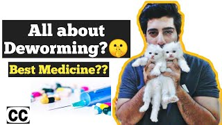 Cat deworming | How to deworm Cats and kittens | Symptoms of Cat worms |  Cat deworming is necessary