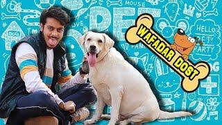WAFADAR DOST    Cute Relationship Between DOG and HUMAN    PREM BHATI