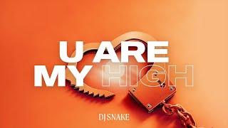 Kadr z teledysku You Are My High tekst piosenki Dj Snake