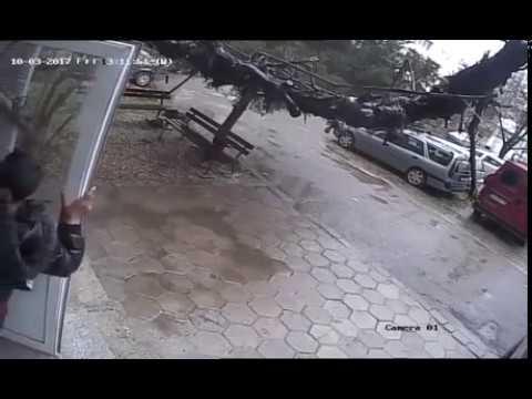 Вор украл входную дверь