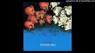 06.Divokej Bill - Armáda