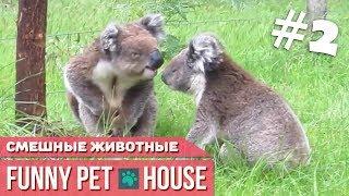 СМЕШНЫЕ ЖИВОТНЫЕ И ПИТОМЦЫ #2 СЕНТЯБРЬ 2018 [Funny Pet House] Смешные животные