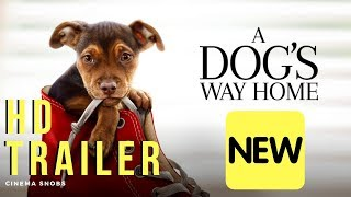 A Dog's Way Home OFFICIAL TRAILER (HD) (2019)