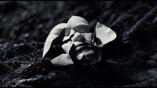 """Touché Amoré – """"Lament"""""""