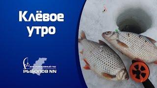 Рыболовные база на горьковском водохранилище