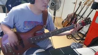 My stoney baby - 311 (bass cover)