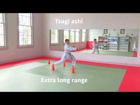 Gyaku Tsuki - reverse punch - KUMITE distance tutorial