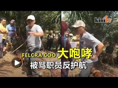Felcra首席运营咆哮影片广传 主席护航:这是常态