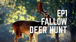 The PH Journals : Fellow DEER