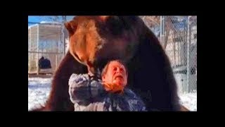 The bear killed the trainer. Full version / Horrible bear attack on a person - The Best Documentary