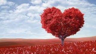 Brandi Carlile- Keep Your Heart Young Lyrics HD