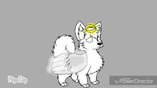 R.I.P Gabe the Dog