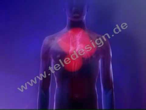 Sulmi tensioni i gjakut