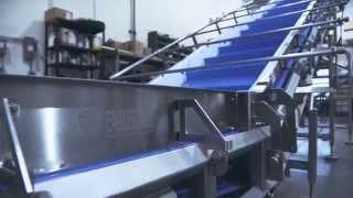 Eaglestone Quick-Clean Conveyor