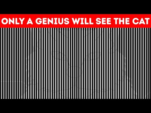 These Optical Illusions Will Play Tricks On Your Mind