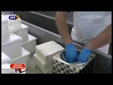 Διακρίσεις για οικοτεχνία τυροκομικών στην Ασβεστόπετρα Κοζάνης | ΕΡΤ