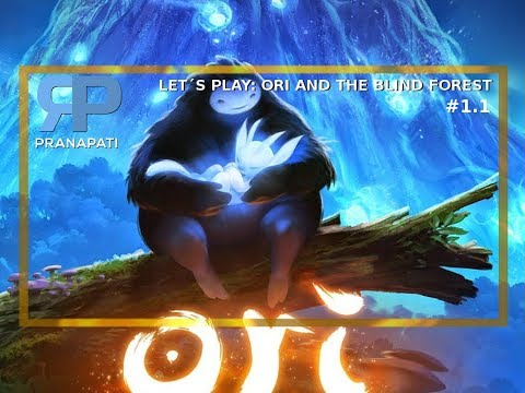 Let´s play s Rajneeshem: Ori and the Blind forest