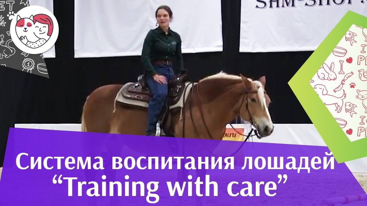 Шоу презентация системы воспитания Training with care Ч 2 Дарья Бойцова ЭКВИРОС 2016 iLikePet