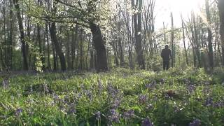 DANS LE SILENCE - Jean Humenry -