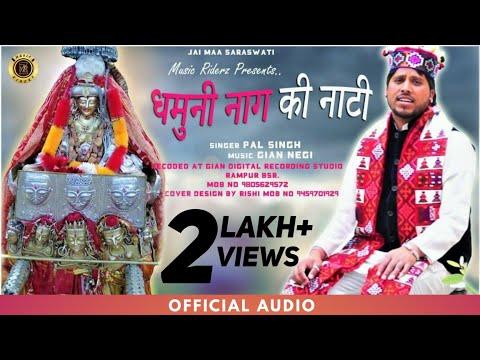 Latest Pahari Naati 2019 | Dhamuni Naag Ki Suketi Naati | Pal Singh - Music RiderZ