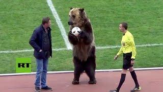 El saque de honor de un inusual invitado en el fútbol ruso