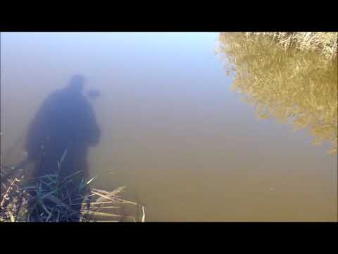 рыбалка в адыгее рыбалка, fishing, рыбалка в краснодарском крае, ловля карпа,