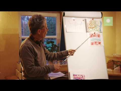 fröhlichsprühen-Kurzvortrag zum Thema Lymphsystem von Dr. med Peter Bucher