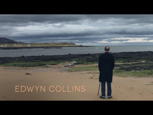 I Guess We Were Young  - Edwyn Collins