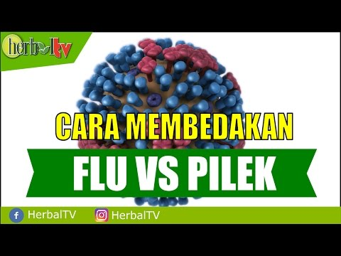 Video Mengetahui Perbedaan Antara Flu dan Pilek