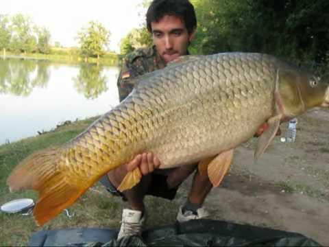 Pesca del Fiume Medveditsa di una fotografia