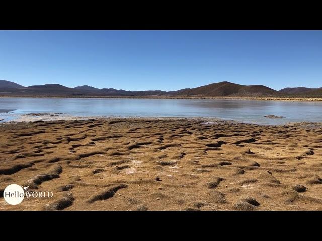 Abenteuer 100 Tage Südamerika: Laguna Vinto Rundblick