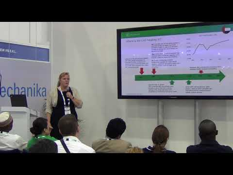 Sandra Engelhard Senior Analyst, Light Vehicle Sales Forecasting, IHS Markit