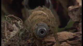 顶尖狙击手潜伏在巴拿马丛林数天,只为狙杀一个目标,厉害了