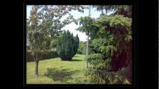 preview picture of video 'Bed and Breakfast Valmontone Apple Tree'