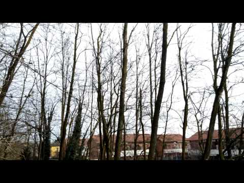 Foto LG G Flex: Test video Ultra HD 4K