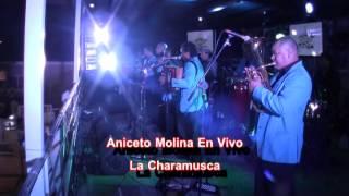 Aniceto Molina   La Charamusca Y La Cumbia Sampuesana