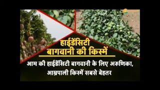 Krishi Kranti: हाईडेंसिटी बागवानी से कम एरिया में ज्यादा फलत की गांरटी