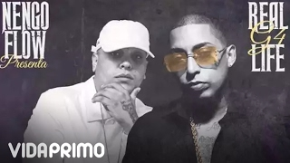 Mami Damelo A Mi (Audio) - Ñengo Flow (Video)