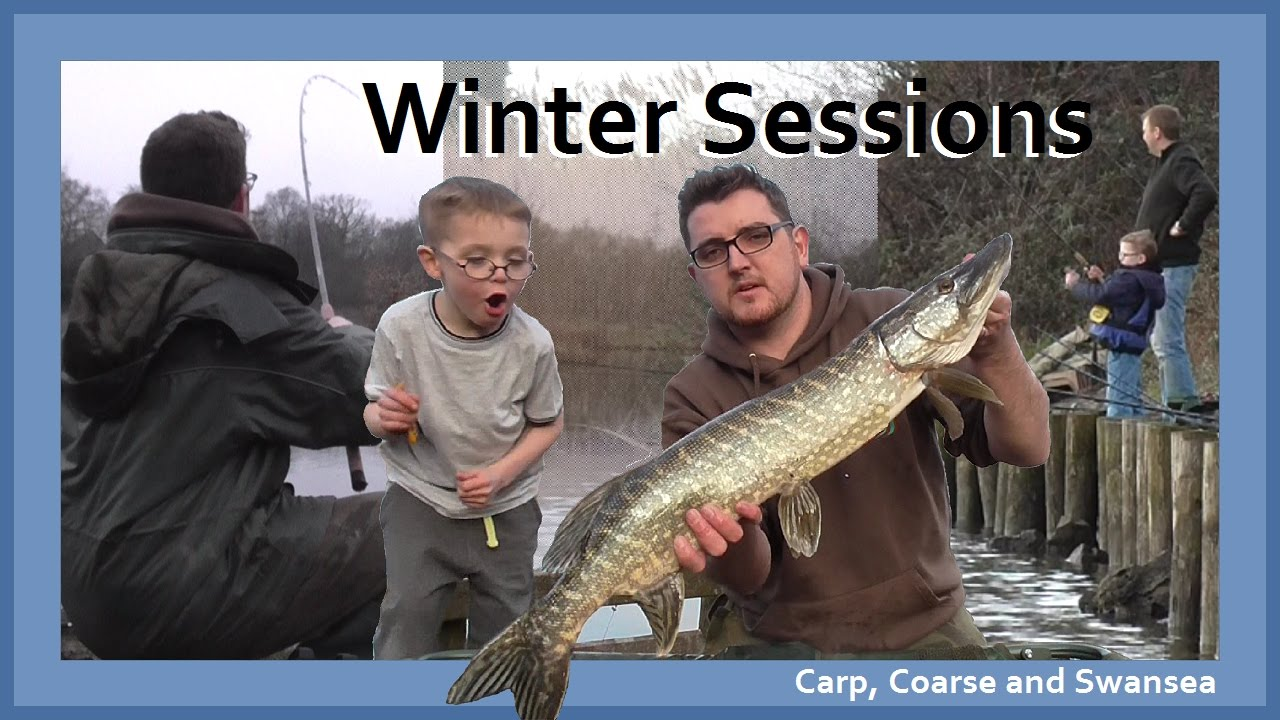 Carp, Bream, Perch, Pike and Tench. Carp Coarse and Swansea Video 147