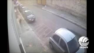 Bari, non raccoglie le deiezioni del cane: multato padrone incivile - IL VIDEO