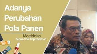 Tanggapi Soal Impor Beras, Moeldoko: Ada Perubahan Pola Panen