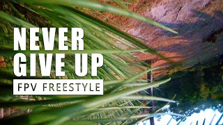 ● FPV FREESTYLE   NEVER GIVE UP   JM FPV ●