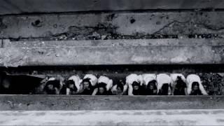 Каменске Уральском 9 залов ховрино фото Стамбул Адана