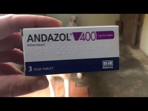 cinci tablete parazite cum să dai un antihelmintic unei persoane