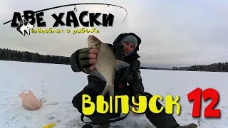Рыбалка на рузском водохранилище отчет о рыбалке зимой