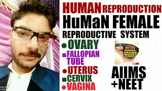 Female Reproductive System|Human Reproduction|Rahul anand Biology Tutorial|Aiims;Neet