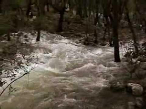 RE: Surgencias de agua
