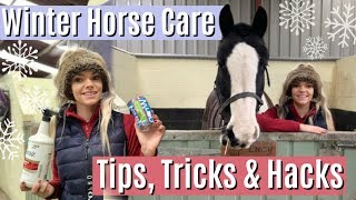 10 Winter Horse Care Hacks & Tips | Lilpetchannel