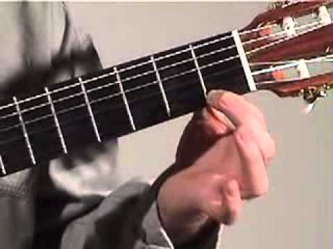Beginner Guitar Lesson 1b