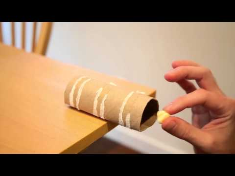 Make A No-Kill Mousetrap With A Toilet Paper Roll